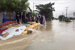 Bão số 9 gây ngập lụt, làm thiệt hại bước đầu tại Ninh Thuận