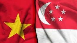 Tăng cường kết nối kinh tế Việt Nam-Singapore