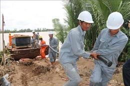 'Ốc đảo' Cồn Phụng - Trà Vinh đã có điện lưới quốc gia