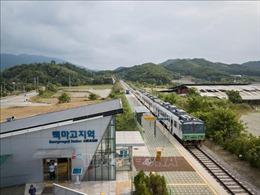Hàn Quốc và Triều Tiên khảo sát chung tuyến đường bộ phía Đông Triều Tiên