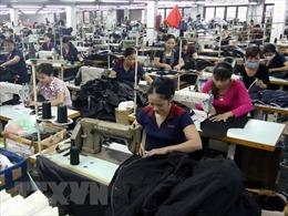 Thưởng Tết trung bình của người lao động ở Bình Dương là 7,66 triệu đồng