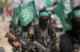 Hamas tuyên bố kiểm soát cửa khẩu giữa Dải Gaza với Ai Cập