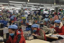 Xu hướng phát triển bền vững chongành dệt may Việt Nam