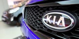Năm kinh doanh ảm đạm của Hyundai và Kia tại thị trường Mỹ