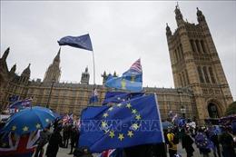 EU đề nghị Anh làm rõ các bước đi tiếp theo sau khi Hạ viện bỏ phiếu bác bỏ thỏa thuận