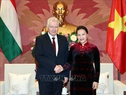 Chủ tịch Quốc hội Nguyễn Thị Kim Ngân tiếp Phó Chủ tịch Quốc hội Hungary