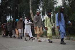 Afghanistan: Trúng phục kích, chỉ huy phiến quân trung thành với Taliban bị tiêu diệt