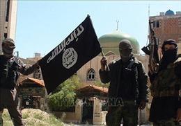 Đức ra điều kiện tiếp nhận các tay súng IS bị bắt ở Syria