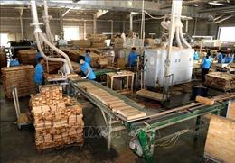 Tháng 2, chỉ số sản xuất toàn ngành công nghiệp giảm 16,8%