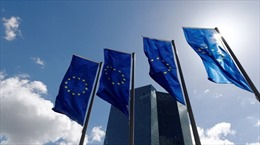 EU gia hạn trừng phạt nhiều cá nhân người Ukraine