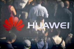 Đức không có kế hoạch cấm tập đoàn Huawei tham gia thiết lập mạng 5G