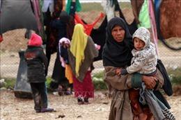 Hơn 62.000 người đổ về trại di tản Al-Hol ở Syria để tránh giao tranh