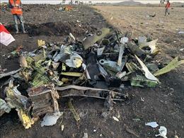 Vụ tai nạn máy bay Ethiopia: Tìm thấy cả 2 hộp đen ghi dữ liệu và ghi âm buồng lái