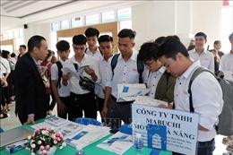 198 sinh viên Việt Nam được tiếp nhận sang thực tập, làm việc ở Nhật Bản