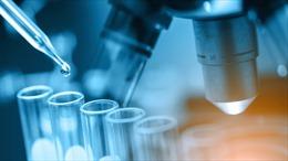 Mỹ thử nghiệm thành công cách chữa bệnh hồng cầu hình liềm nan y