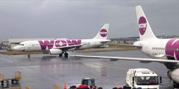 Hãng hàng không giá rẻ WOW Air của Iceland bất ngờ thông báo dừng hoạt động