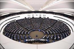 Nội bộ EU bất đồng về đàm phán thương mại với Mỹ