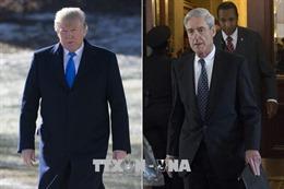 Tổng thống Mỹ liên tục chỉ trích cựu Công tố viên đặc biệt Robert Mueller