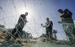 Các nhóm vũ trang Palestine chấm dứt các cuộc tấn công ở Gaza