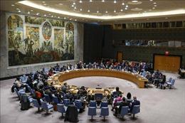 Các nước Arab không thống nhất việc đưa ra một nghị quyết về Cao nguyên Golan