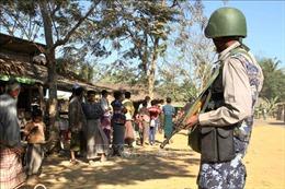 Myanmar điều động hàng nghìn binh sỹ để đối phó với phiến quân Arakan