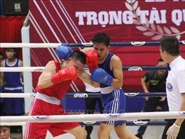 Khai mạc Giải Vô địch các Câu lạc bộ Boxing toàn quốc năm 2019