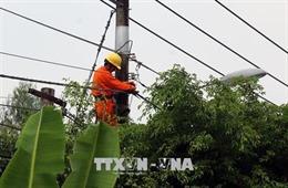 Gần 100 hộ dân xã nông thôn mới vẫn 'ngóng' điện lưới quốc gia