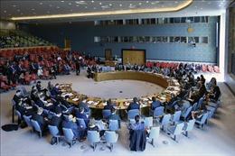 Trung Quốc phản ứng việc Hội đồng Bảo an không triệu tập cuộc họp về Ukraine