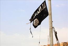 Cảnh báo về sự bành trướng của IS và al-Qaeda