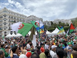 Chưa có ứng viên hợp lệ, Algeria hủy kế hoạch bầu cử tổng thống