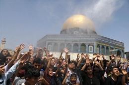Đụng độ giữa người Palestine và cảnh sát Israel, hành chục người bị thương