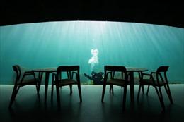 Bữa ăn diệu kỳ dưới lòng đại dương châu Âu