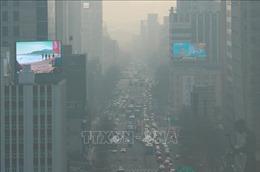 Đối phó với thách thức ô nhiễm không khí - Bài 2: Chương trình quản lý tổng hợp chất lượng không khí tốt hơn