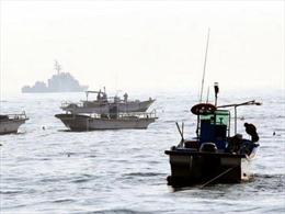 Thúc đẩy hợp tác nghề cá liên Triều