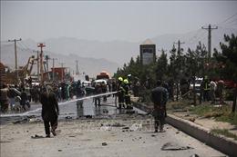 Afghanistan mở nhiều chiến dịch quy mô lớn truy quét Taliban