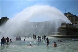 Pháp ghi nhận nhiệt độ cao kỷ lục vượt mọi thời đại
