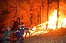 Chưa thể sử dụng trực thăng chữa cháy rừng do gió phơn thổi mạnh