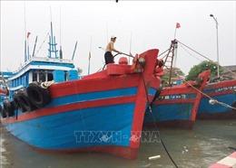Ứng phó với bão số 2: Các địa phương tích cực kêu gọi tàu thuyền vào tránh trú bão
