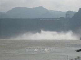 Thủy điện Hòa Bình khai thác 'cầm chừng' do thiếu nước