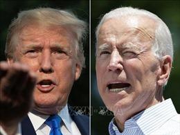 Cựu Phó Tổng thống Biden dẫn trước Tổng thống Trump trong cuộc thăm dò dư luận
