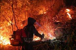 Nhân viên Điện lực Hương Sơn thức trắng đêm để chống cháy rừng