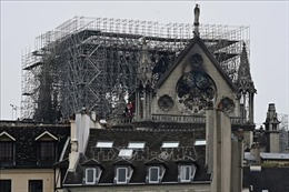 Lo ngại nồng độ chì, các trường học gần nhà thờ Đức Bà Paris được yêu cầu dọn dẹp