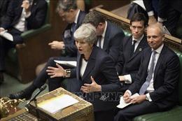 Thủ tướng May thất vọng vì nhiều Bộ trưởng không tham gia bỏ phiếu về Brexit