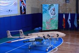 Iran tuyên bố chưa có thông tin về vụ máy bay không người lái bị bắn hạ