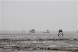 Các địa phương biên giới tỉnh Quảng Ninh sẵn sàng các phương án khi bão số 3 đổ bộ