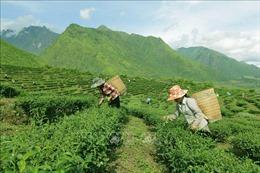 'Hút' doanh nghiệp đầu tư vào miền núi, biên giới, hải đảo