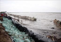 Cà Mau ban bố tình huống khẩn cấp bảo vệ đê biển Tây