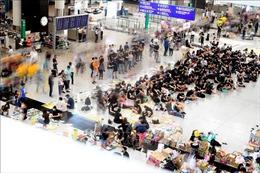 Vẫn có hơn 200 chuyến bay bị hủy tại Sân bay quốc tế Hong Kong