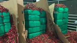 Gần 4 tấn cần sa được giấu trong lô hàng ớt