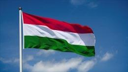 Điện mừng Quốc khánh Hungary